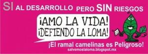 salvemoslaloma.blogspot.mx