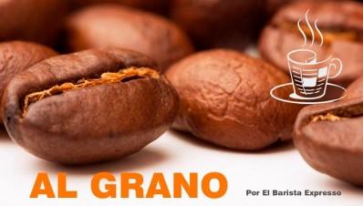 Al Grano Editorial MonitorExpresso.com