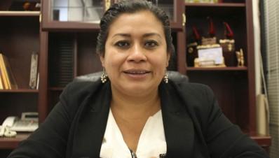 Belinda Iturbide Díaz diputada