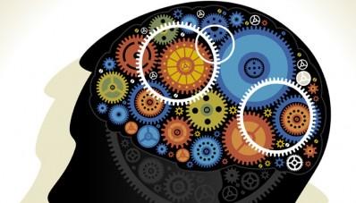 Trabajo del Cerebro Humano