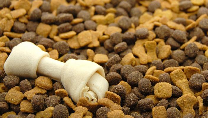 La producción de alimento para mascotas es cada vez más grande en México