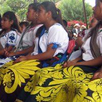 Silvano no quiere gastar en los pueblos indígenas: Movimiento Indígena de Michoacán