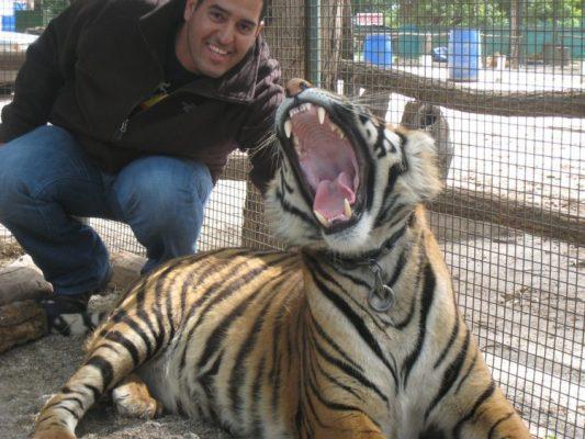 Zoológico droga a animales para que turistas puedan tomarse 'selfies'