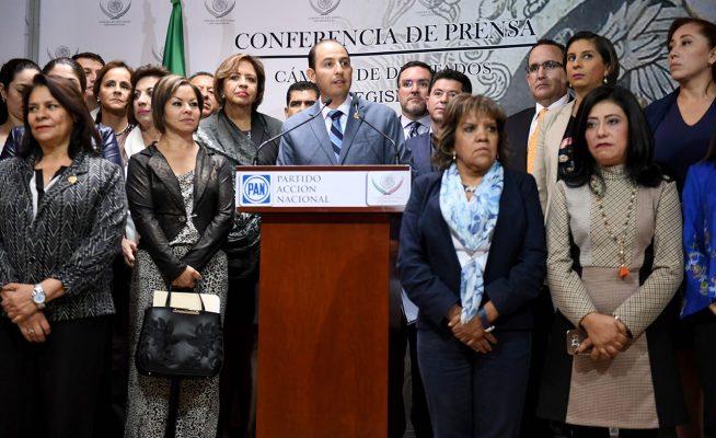 Acción Nacional, Comité Nacional