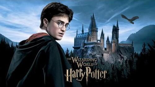 Preparan nuevo juego de Harry Potter para consolas