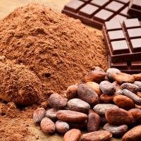 El chocolate es tan bueno para la tos como la miel con limón