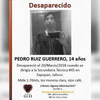 Aparece Susana; siguen desaparecidos Pedro Ruiz, César, Javier, Daniel y Marco en Jalisco