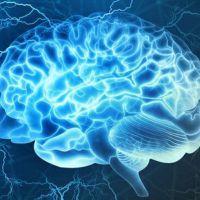 Síntomas de Alzheimer pueden presentarse desde los 35 años: IMSS
