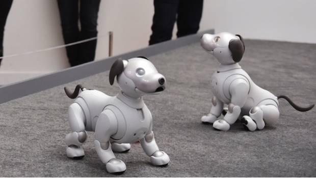 Aibo, el perro robot de Sony, saldrá a la venta en EU