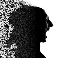 Investigadores descubren que células inmunes son claves para el desarrollo de la esquizofrenia