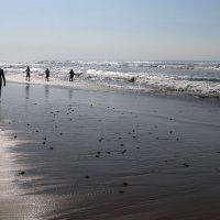 Cierre de playas, medida necesaria para evitar tentaciones; diputado