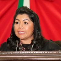 Para PRD, PAN, PRI, Verde y MORENA no urge resolver el conflicto político en Nahuatzen: Brenda Fraga
