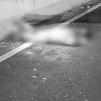 Encuentran el cuerpo de un hombre en carretera federal Apatzingán-Nueva Italia