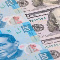 Precio del dólar para este sábado