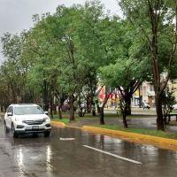 Se esperan lluvias la mayor parte del día en Michoacán