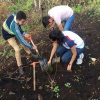 Nicolaitas por el Planeta inicia con reforestación
