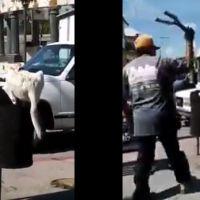 Hombre corta la colita a un perro cuando este buscaba algo de comida en Puebla (Video)