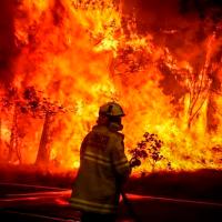 En el 2020 fueron afectadas más de 18 mil hectáreas por incendios forestales en Michoacán