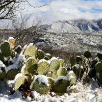 Se esperan lluvias fuertes y caída de nieve y aguanieve en Sonora y Chihuahua