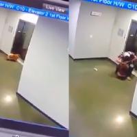 Hombre salvó la vida de un perrito en un elevador, en Texas (Video)