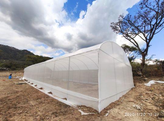Ayuntamiento de Morelia informa que hay avances en el sector rural