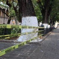 A partir del lunes 1 de junio iniciará una Nueva Convivencia, indicó gobernador de Michoacán