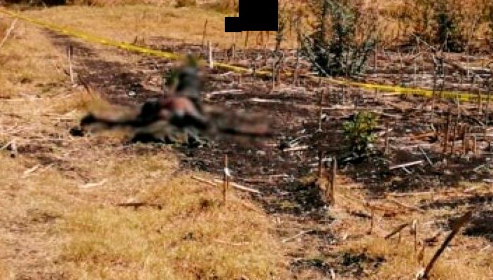 Encuentran un cuerpo putrefacto en predio de la ciudad de Zamora, Michoacán
