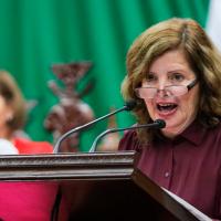 Diputada de Morena se molesta porque le desechan iniciativa que ya esta en la Ley Olimpia