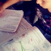 Secretaría de Educación en Michoacán anuncia ciclo escolar concluye el 5 de junio