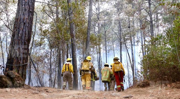 Incendio en la montaña del Parque Nacional de Uruapan es controlado