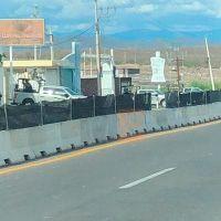 Trasladan 380 reos del penal de Puente Grande Jalisco al Cefereso de Buenavista, Michoacán