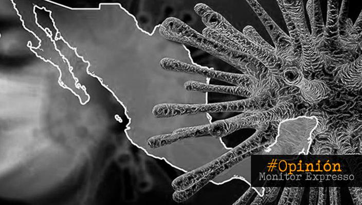 Blindar la Nación ante las futuras pandemias; Opinión de Teresa Da Cunha Lopes