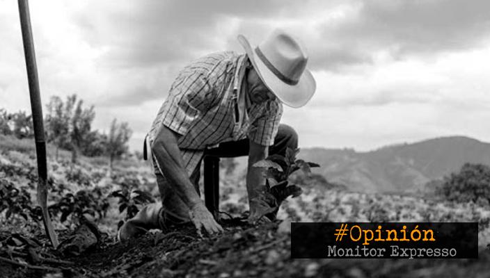 Dos formas de hacer agricultura y un mismo mercado – La Opinión de Estanislao Soto Andrade