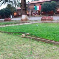 Denuncian abandono de Santuario de la Virgen de la Salud en Pátzcuaro