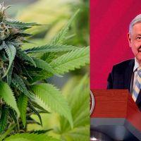 AMLO confía en que los mexicanos serán responsables en el consumo de Marihuana