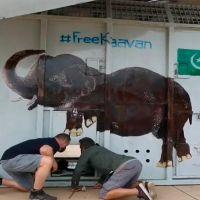 """El """"elefante más solitario del mundo"""" es trasladado a Camboya (Video)"""