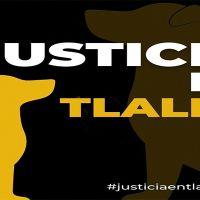 Exigen justicia para perro que mataron a golpes en Tlalnepantla #JusticiaEnTlalne